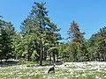 Jeep safari Kemer - Gedelme - Ovachik - panoramio (22).jpg