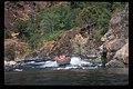 Jet Boating Rogue River, Rogue River Siskiyou National Forest (23528325559).jpg