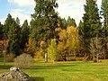 John A. Finch Arboretum - IMG 6939.JPG