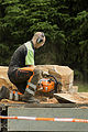 Jonnychainsaw art demonstration at Muiravonside country park in 2015.jpg