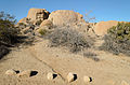 Joshua Tree National Park December 2013 007.jpg