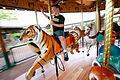 KCZoo carousel.jpg