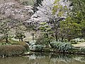 Kairakuen (7125509519).jpg