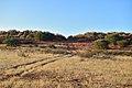 Kalahari landscape, Kalahari, Northern Cape, South Africa (20353873770).jpg