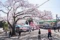 Kamine Park, Ibaraki 04.jpg