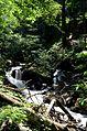 Kanjon reke Samokovke DSC 0334.jpg