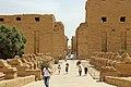 Karnak Western Sphinxes Alley R01.jpg