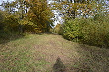 King's Wood, Heath and Reach 4.JPG