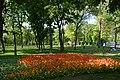 Kirovograd Dendropark 04 (YDS 4213).jpg