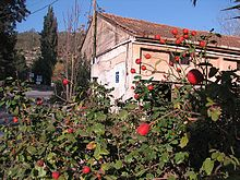 Kibbutz Wikipedia