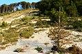 Klif Gosań - panoramio (2).jpg