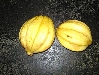 Garcinia gummi-gutta - Ripe fruit