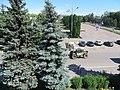 Kulykivka IMG 4563 bazar 02.jpg