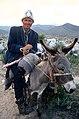 Kyrgyz donkey rider.jpg