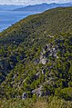 La collina sopra Varigotti - panoramio.jpg