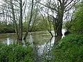 """La riviere """" seiche """" a chartres de bretagne - panoramio.jpg"""