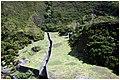 Lagoa do Fogo - panoramio (79).jpg