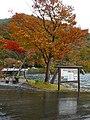 Lake Towada 十和田湖 - panoramio (1).jpg