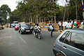 Lalbagh Metro Construction Tree Felling Protest (3450225235).jpg