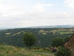 Landscape-IMG 6970.JPG