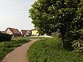 Landschaftsschutzgebiet Wäldchen bei Buer Melle Datei 26.jpg
