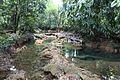 Las preciosas cascadas de Agua Azul, Chiapas. 18.JPG