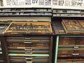 Letterpress type cases at Washington University in St. Louis.jpg