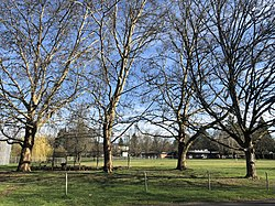 Park grounds behind Seth Lewelling Elementary School