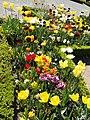Limoges jardins eveche 2 (13968073657).jpg