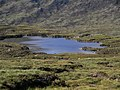 Loch Odhar - geograph.org.uk - 51368.jpg