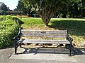 Long shot of the bench (OpenBenches 7411-1).jpg