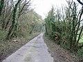 Looking S along Pett Bottom Road - geograph.org.uk - 330878.jpg