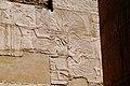 Luxor Karnak-Tempel 2016-03-21 Große Säulenhalle 11.jpg