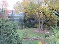 MSU 2014 Botanical Garden B.jpg