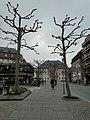 Mainz 29.03.2013 - panoramio (14).jpg
