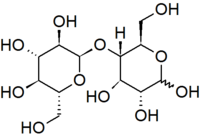 Maltose cyclic horizontal.png