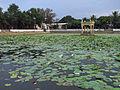 Mamallapuram-kalyani.jpg