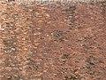 Manoir de Laleu à Chouzy-sur-Cisse le 23 mai 2004 - 10.jpg