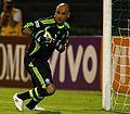 Marcos Roberto Silveira Reis (2010).JPG