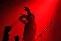 Marduk at Hatefest (Martin Rulsch) 15.jpg