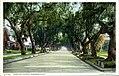Marengo Avenue (NBY 7201).jpg
