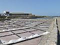 Marine water saline - Salinas del Carmen - Museo de la Sal - Fuerteventura - Canary islands - Spain - 17.jpg