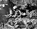 Mass Graves (Suttrop) Russian Refugees identify corpses.jpg
