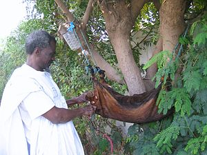 Goatskin (material) - Image: Mauritanian bota bag