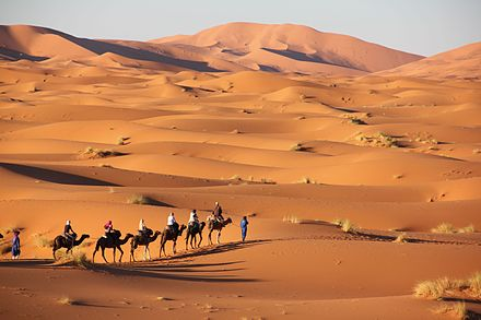 Landscape of the Erg Chebbi Merzouga sahara.jpg