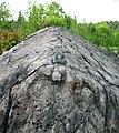 Metagraywackes (Chelmsford Formation, Paleoproterozoic, 1.74 Ga; Larchwood North outcrop, Sudbury Impact Structure, Ontario, Canada) 20 (32817627707).jpg