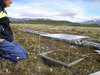Arctic methane emissions - PMMA chambers used to measure methane and CO<sub>2</sub> emissions in Storflaket peat bog near Abisko, northern Sweden.