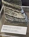 Migmatit from Antarctica.jpg