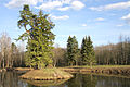 Mill Pond in Rayok Village.jpg