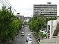 Minamigoyo - panoramio (27).jpg